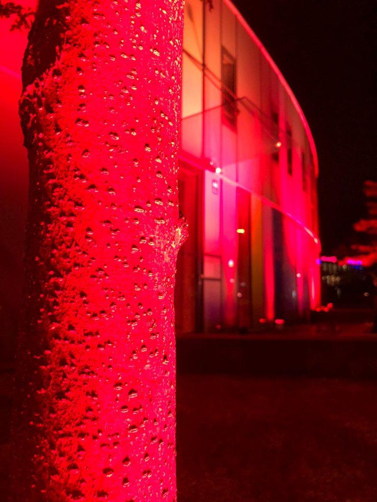 Night of Light - so war es 2